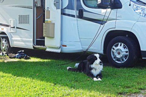 Camping in Drenthe met uitstekende voorzieningen, speeltoestellen, midgetgolf en indoorspeelplaats
